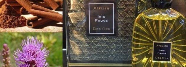 iris fauvre
